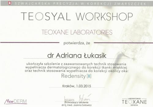 Teosyal workshop-1-min